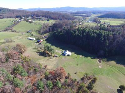 Wythe County Single Family Home For Sale: 375 Edgewood Road