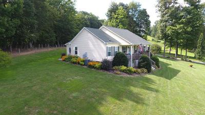 Galax Single Family Home For Sale: 203 Beaver Creek Rd