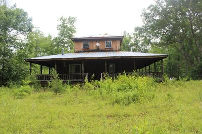 Carroll County, Grayson County Single Family Home For Sale: 1249 Sutphintown Rd