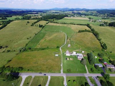 Rural Retreat Residential Lots & Land For Sale: 1148 Cedar Springs Road