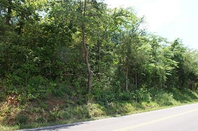 Austinville Residential Lots & Land For Sale: Tbd Lead Mine Rd