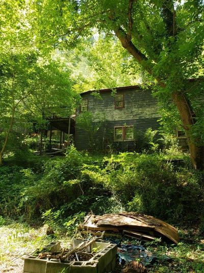 Abingdon VA Single Family Home For Sale: $17,500