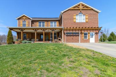 Abingdon VA Single Family Home For Sale: $384,900