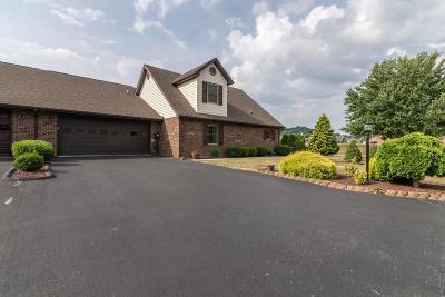 Abingdon VA Condo/Townhouse For Sale: $191,250