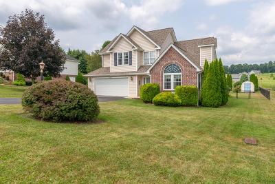 Abingdon VA Single Family Home For Sale: $249,000