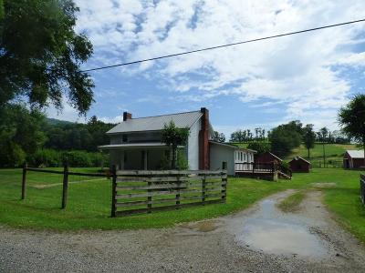Wytheville Single Family Home For Sale: 736 Mule Hell Road
