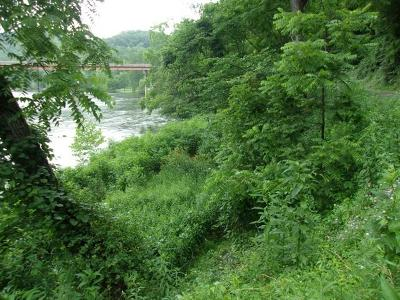 Carroll County, Grayson County Residential Lots & Land For Sale: Tbd Old River Lane