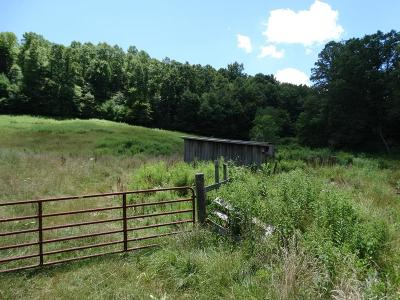 Carroll County, Grayson County Residential Lots & Land For Sale: Tbd Dugspur Road