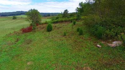 Bristol Residential Lots & Land For Sale: Lot 5 Reedy Creek Rd