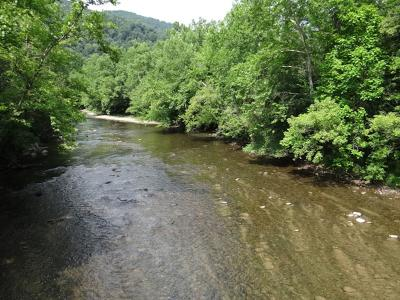 Saltville Residential Lots & Land For Sale: 31300* Sisters Bridge Lane
