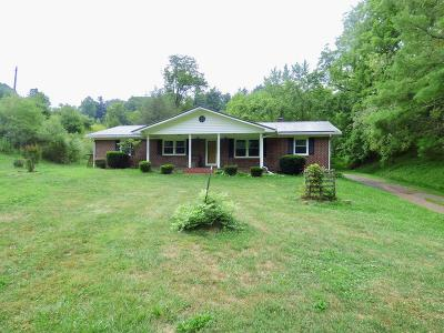 Wytheville Single Family Home For Sale: 2628 Grayson Turnpike