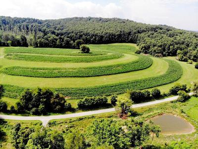 Marion Residential Lots & Land For Sale: Tbd Spring Valley Road
