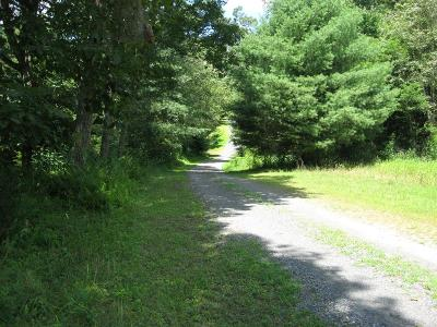 Woodlawn VA Residential Lots & Land For Sale: $69,900