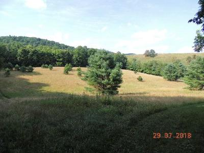 Wytheville Residential Lots & Land For Sale: Tbd Hidden Valley Rd.