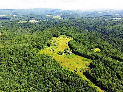 Grayson County Residential Lots & Land For Sale: 8222 Troutdale Highway