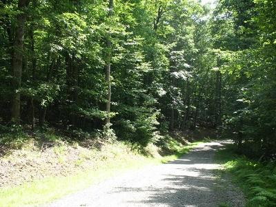 Galax Residential Lots & Land For Sale: Tbd Forest Green