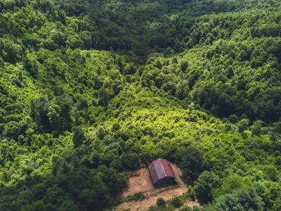 Carroll County, Grayson County Residential Lots & Land For Sale: Deepwater Rd