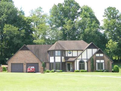 Marion Single Family Home For Sale: 946 South Fork Rd.