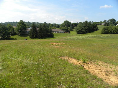 Hillsville Residential Lots & Land For Sale: Tbd Harmon St.