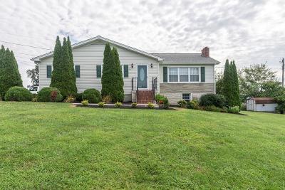 Abingdon VA Single Family Home For Sale: $174,900