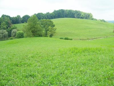 Abingdon Residential Lots & Land For Sale: 16515 Childress Hollow Road