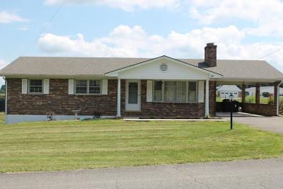 Galax Single Family Home For Sale: 65 Courtland Circle
