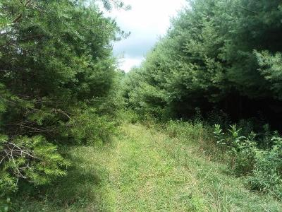 Carroll County, Grayson County Residential Lots & Land For Sale: Tbd Poplar Hill Rd
