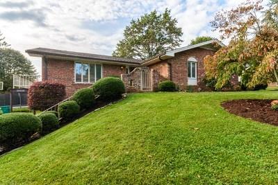 Abingdon VA Single Family Home For Sale: $199,900