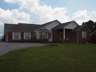Glade Spring Single Family Home For Sale: 12110 Tanglewood Drive