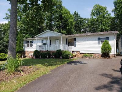 Galax Manufactured Home For Sale: 113 Blueberry Ln