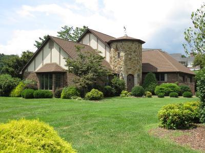 Abingdon VA Single Family Home For Sale: $379,000