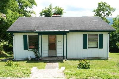 Wytheville Single Family Home For Sale: 1105 Spiller St.