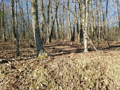 Galax, Woodlawn, Hillsville, Fries Residential Lots & Land For Sale: Tbd End Of The Lane