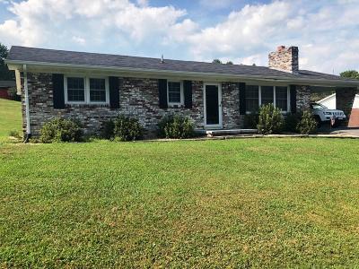 Saltville Single Family Home For Sale: 265 Locust Point Rd
