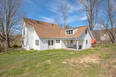 Marion Single Family Home For Sale: 379 Spring Branch Road