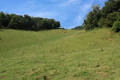 Rural Retreat Residential Lots & Land For Sale: Tbd Etter Road
