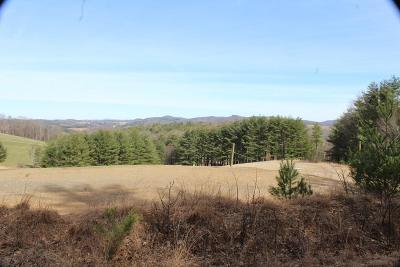 Galax, Woodlawn, Hillsville, Fries Residential Lots & Land For Sale: 8 Turkey Run