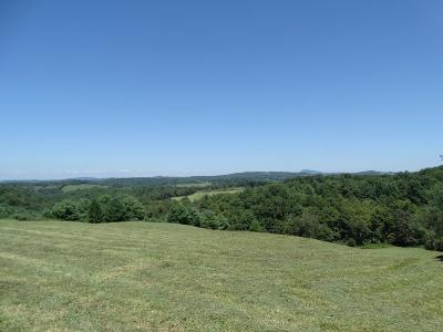 Hillsville VA Residential Lots & Land For Sale: $65,000