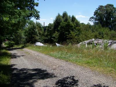 Galax, Woodlawn, Hillsville, Fries Residential Lots & Land For Sale: 113 Religion Rd