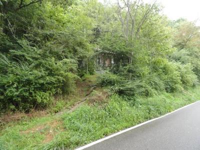 Saltville Residential Lots & Land For Sale: Tba Saltville Highway