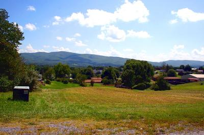 Wytheville Residential Lots & Land For Sale: Tbd Ridge Street