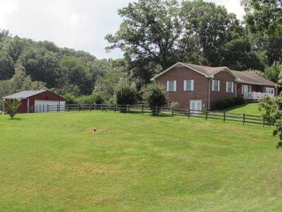 Wythe County Single Family Home For Sale: 603 Kings Grove Lane