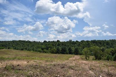 Galax, Woodlawn, Hillsville, Fries Residential Lots & Land For Sale: Oak Grove Rd