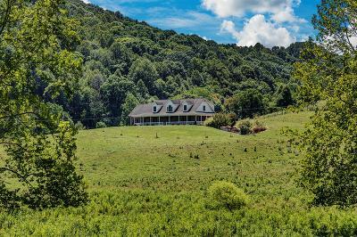 Saltville Single Family Home For Sale: 103 Horton Hollow Road