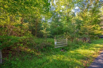 Bland Residential Lots & Land For Sale: Tbd Burtons Pond Rd.