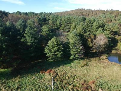 Carroll County, Grayson County Residential Lots & Land For Sale: Tbd Meadow Creek Rd