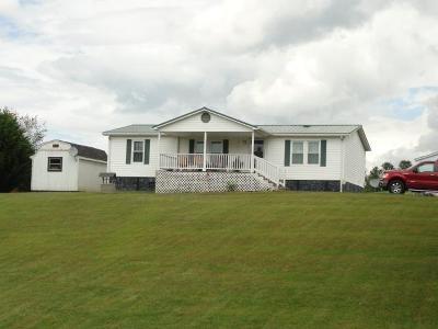 Glade Spring Manufactured Home For Sale: 12397 Prices Bridge Road