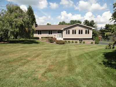 Abingdon VA Single Family Home For Sale: $289,000