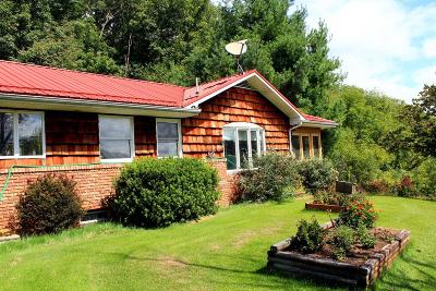 Rural Retreat Single Family Home For Sale: 690 Old King Road