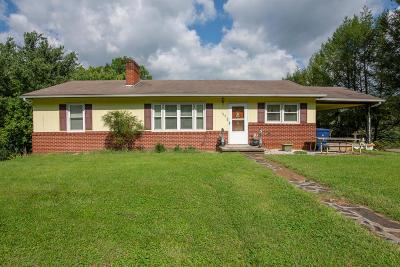 Saltville Single Family Home For Sale: 109 Wiley Drive
